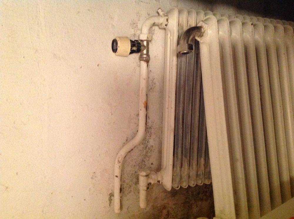 Vattenburna radiatorer/element