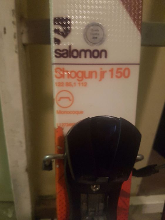 Twintip Salomon Shogun JR 150cm Alpint