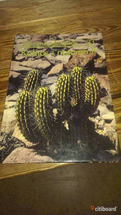 Allt om krukväxter 21-23