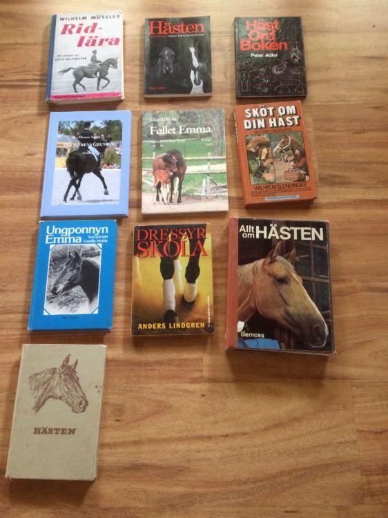 Häst böcker