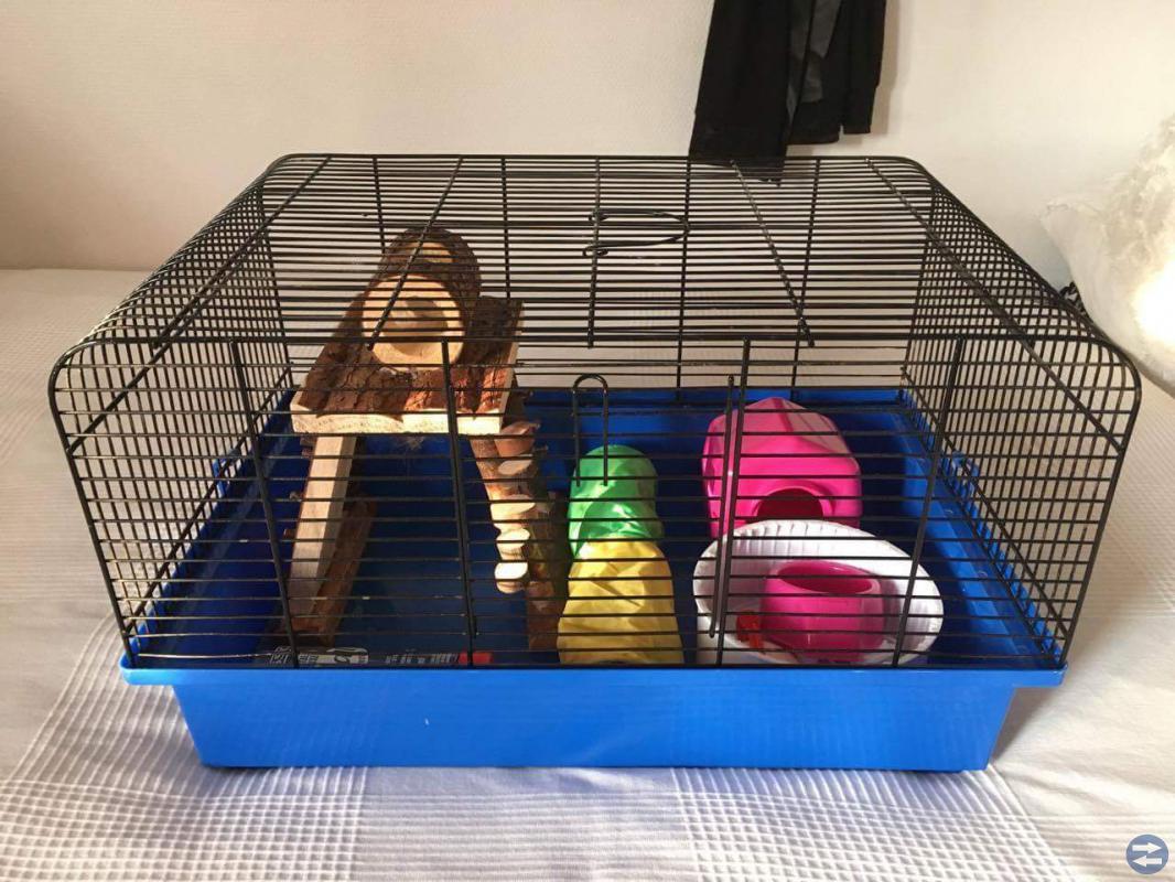 Hamsterbur med tillbehör enligt bild