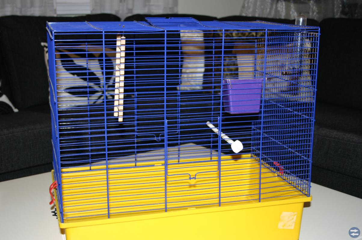 Fågel bur