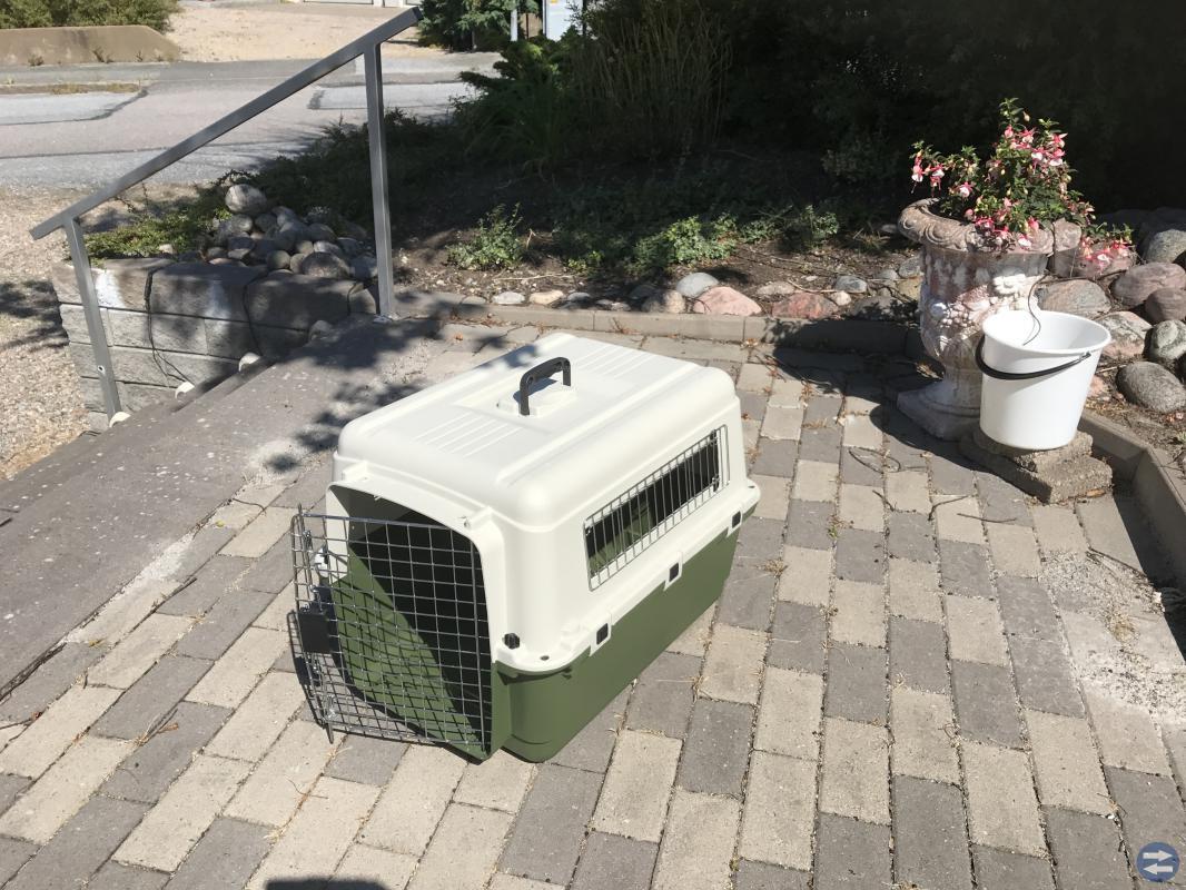 Katt eller Hundbur