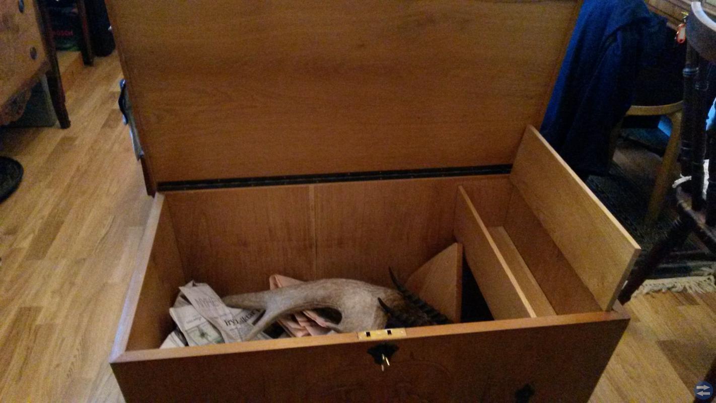 Kista i ek