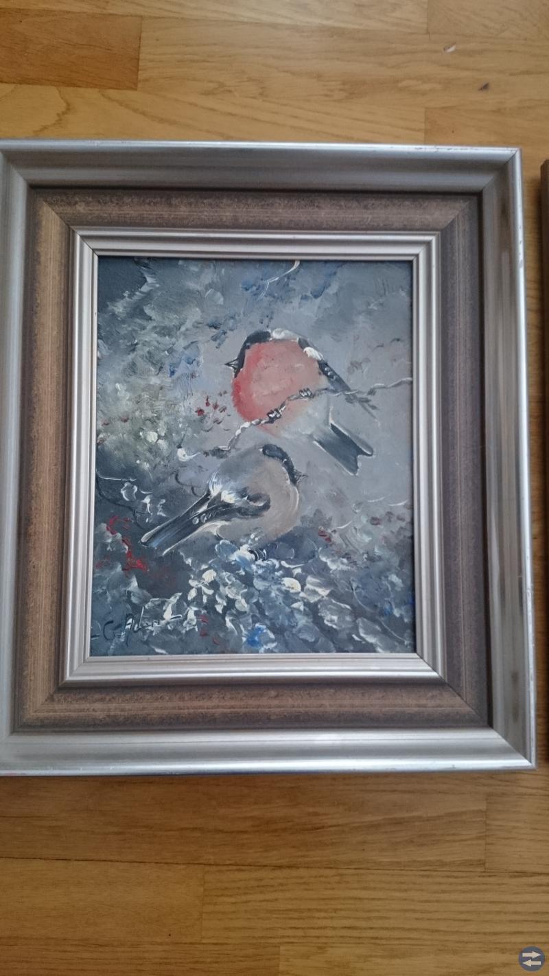 Två tavlor med fågelmotiv