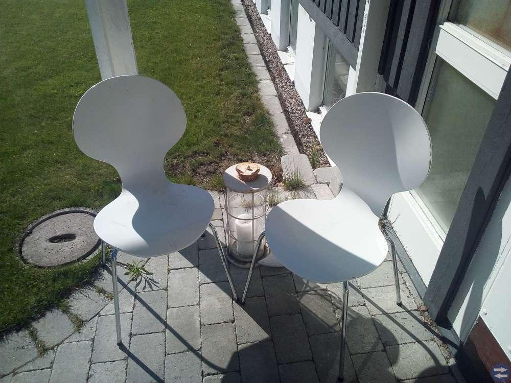3 vita stolar i behov av kärlek