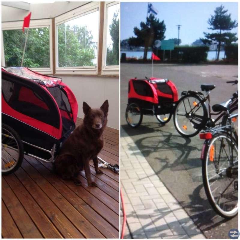 Cykelkärra till hund