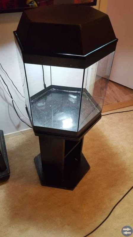 Sexkantigt akvarium med möbel