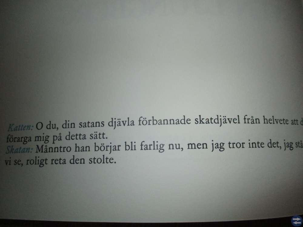 Sven Ljungberg bok ; Katt och skata.
