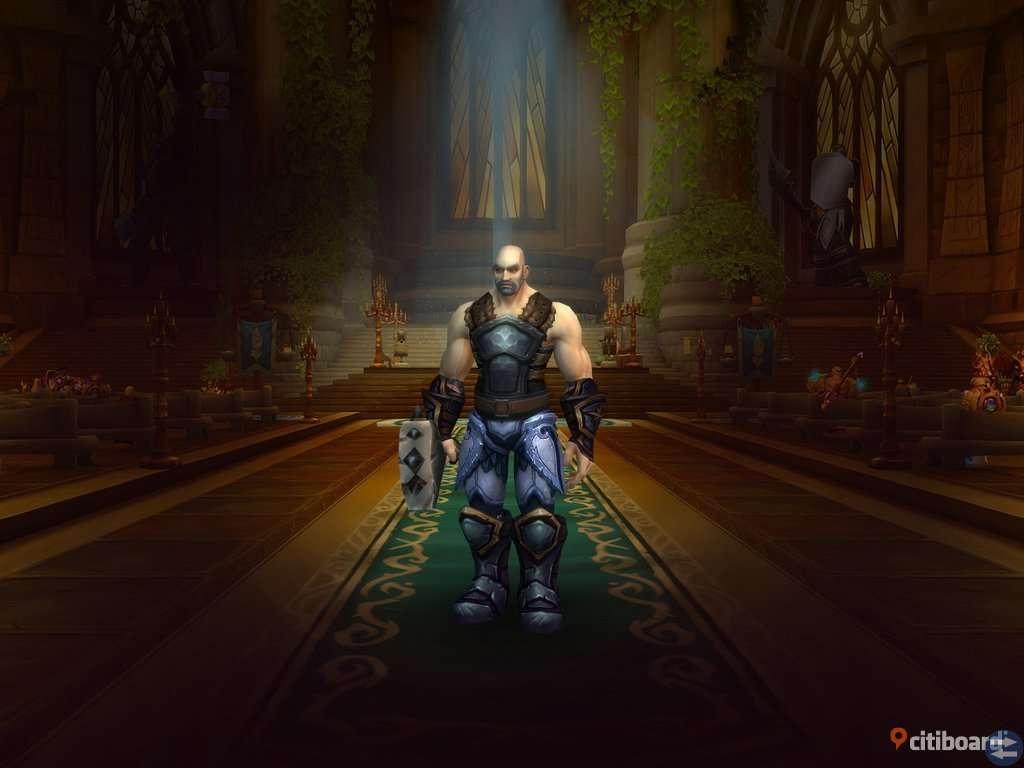 World of Warcraft konto, billigare vid snabb affär!