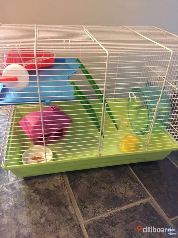 Begangnad hamsterbur med tillbehör