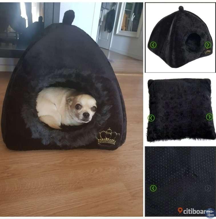 Hund igloo