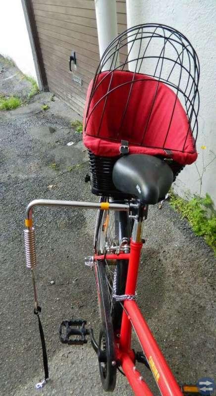 Cykel för hundägare - Paketpris!