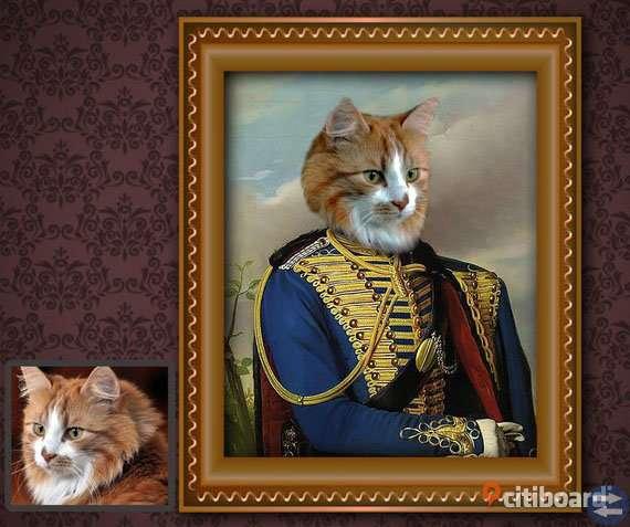 Makalöst roligt porträtt av din katt!