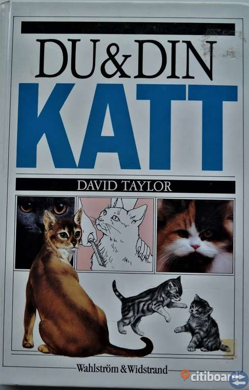 BOK Du och din katt, av David Taylor, 44 kr
