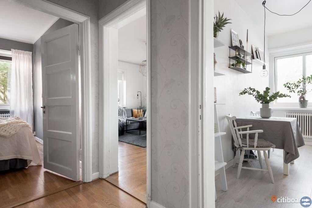 Charmiga lägenhet i hörnläge promenadavstånd till universitetets