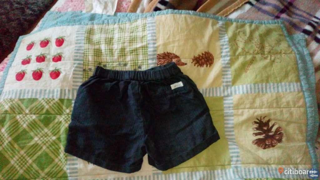Newbie shorts stl 116