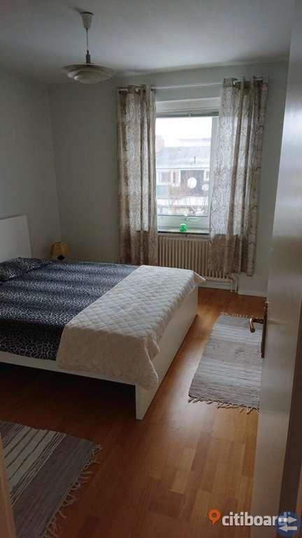 2 rom lägenhet uthyres