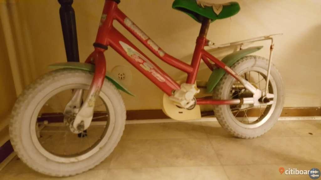 Cykel och iron