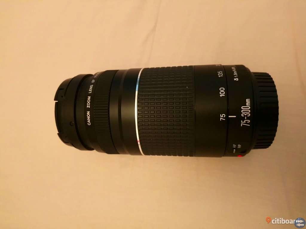 Canon 75-300-objektiv