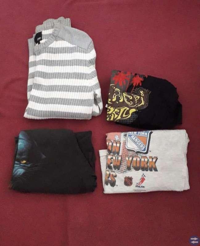 Tröja och T-Shirts (L)