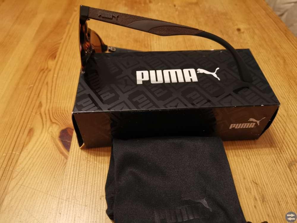 Puma solglasögon