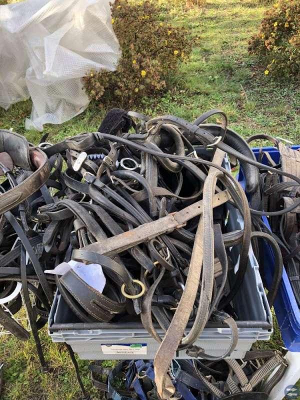 Utrustning för ridsport mm