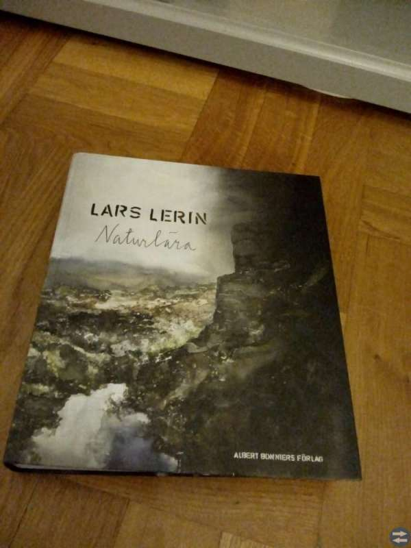 Lars Lerins
