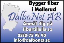22. Dalbo Net AB