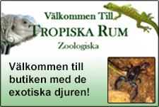16. Tropiska Rum Genevad Zoologiska