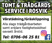 Tomtochträdgårdsservicei Rosvik AB