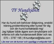 http://tf-hundtjanst.se/